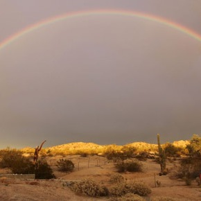 We Stop For Rainbows: Visualize Your Best 2013